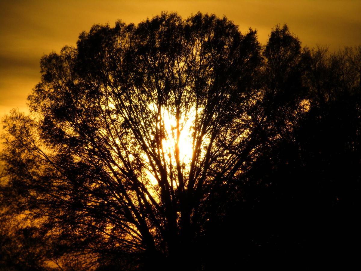 Thanksgiving sunset, courtesy of James Gullage.jpg