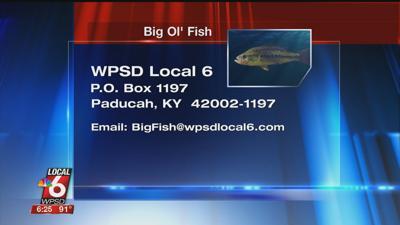 8/20 Big Ol' Fish