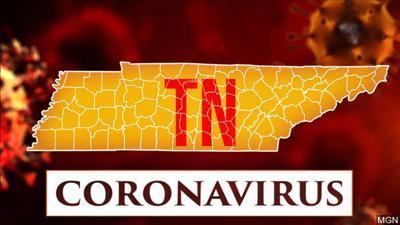 TN coronavirus