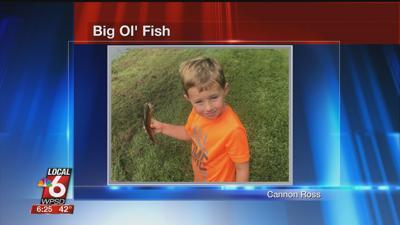 11/17 Big Ol' Fish