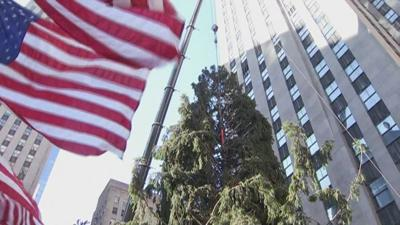 Rockefeller tree NBC.jpg