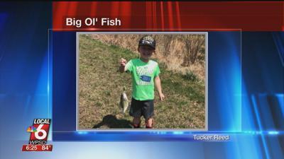 6/9 Big Ol' Fish