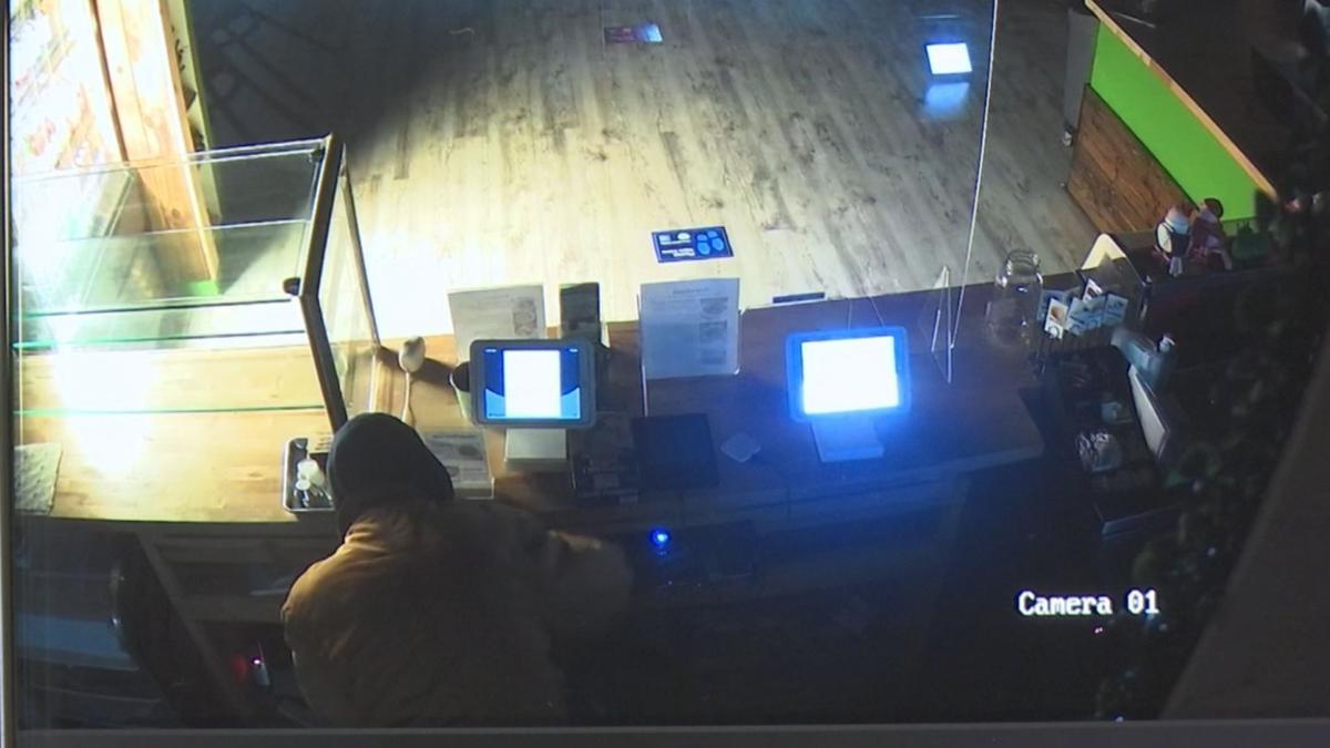 branch out surveillance 4.jpg