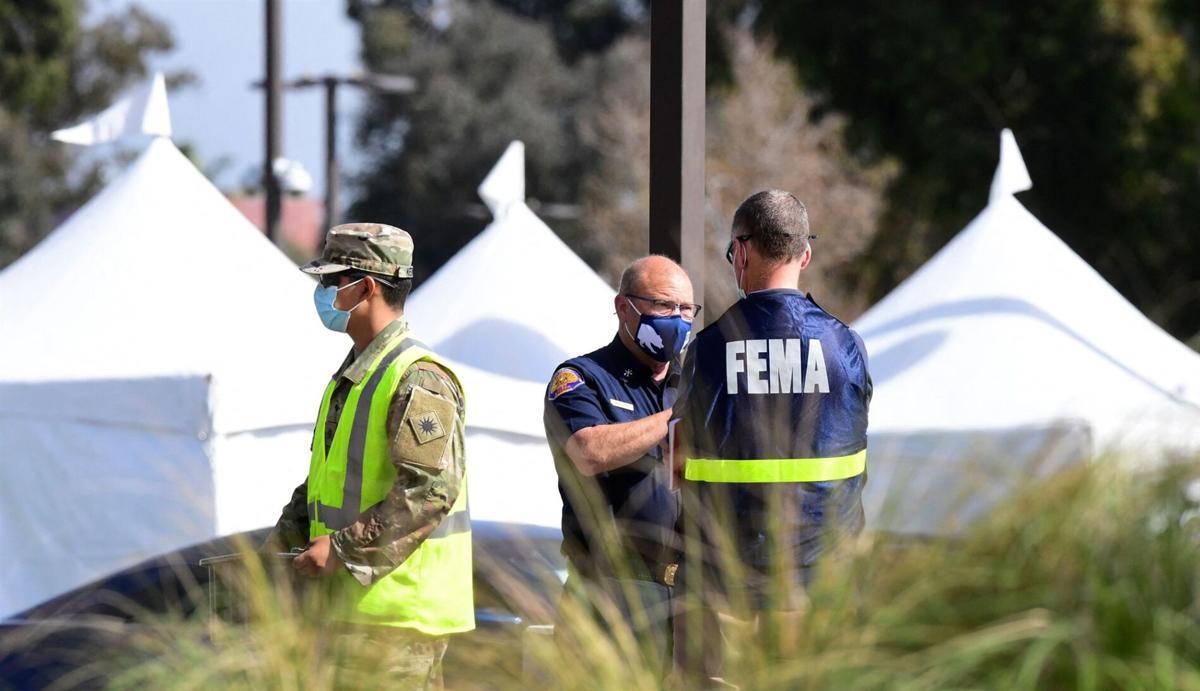 FEMA 1