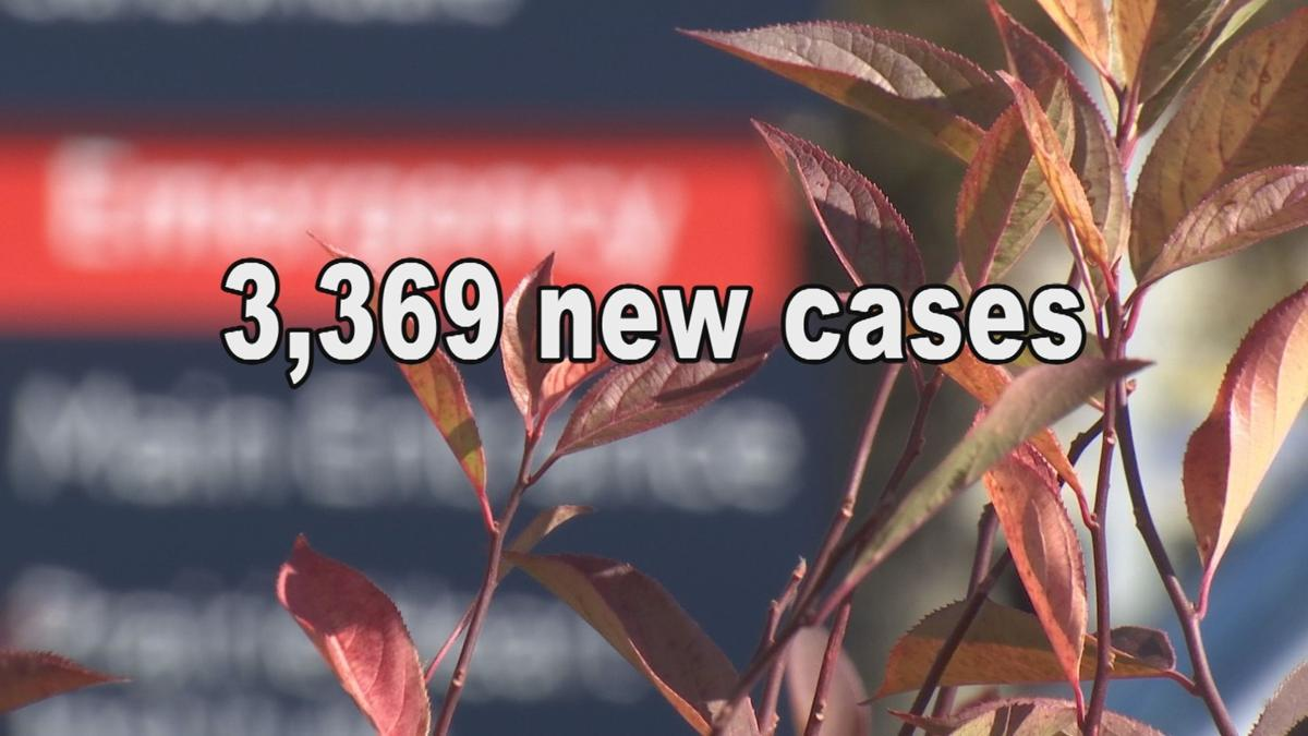 illinois case count