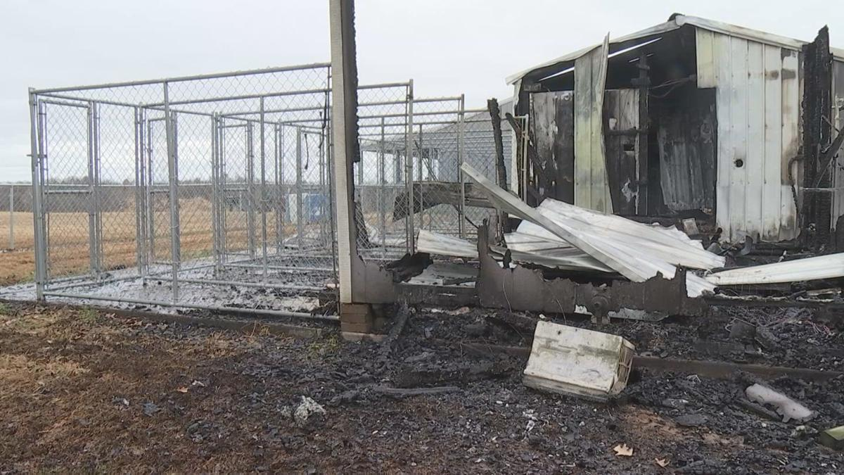 Dog kennel fire