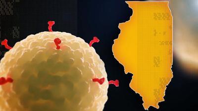 Coronavirus IL WEB