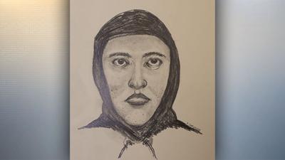 Possible Serial Rapist Sketch Web Pic