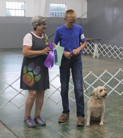 4-H'ers Demonstrate Skills with Canine Companions