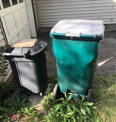 Trash bins.jpg