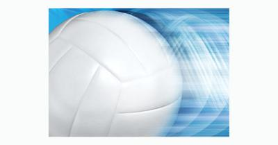 volley ball only image