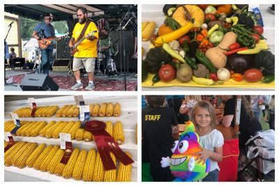 Sandwich Fair Day one collage 090821.jpg