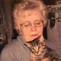 Carol V. Emmel