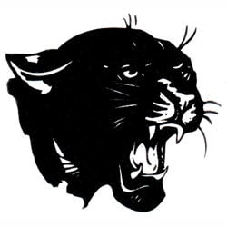 Oswego Panthers 250x250 logo