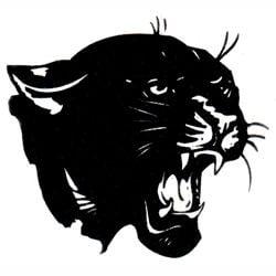 Oswego Panthers 250x250 logo
