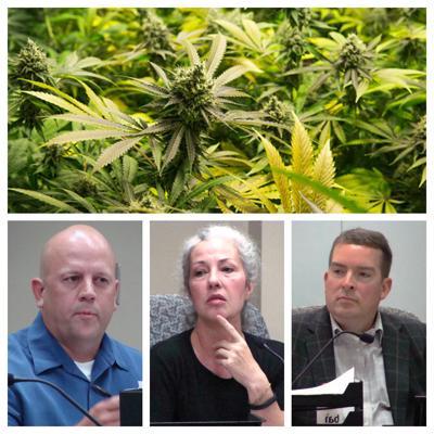 Collage:  Michigan Marijuana, Tony Giles, Audra Hendrix and Scott Gryder
