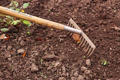 soil rake