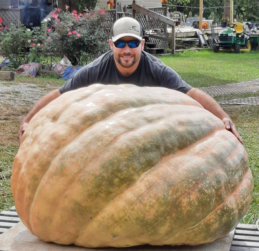 20201017-gm-pumpkin1