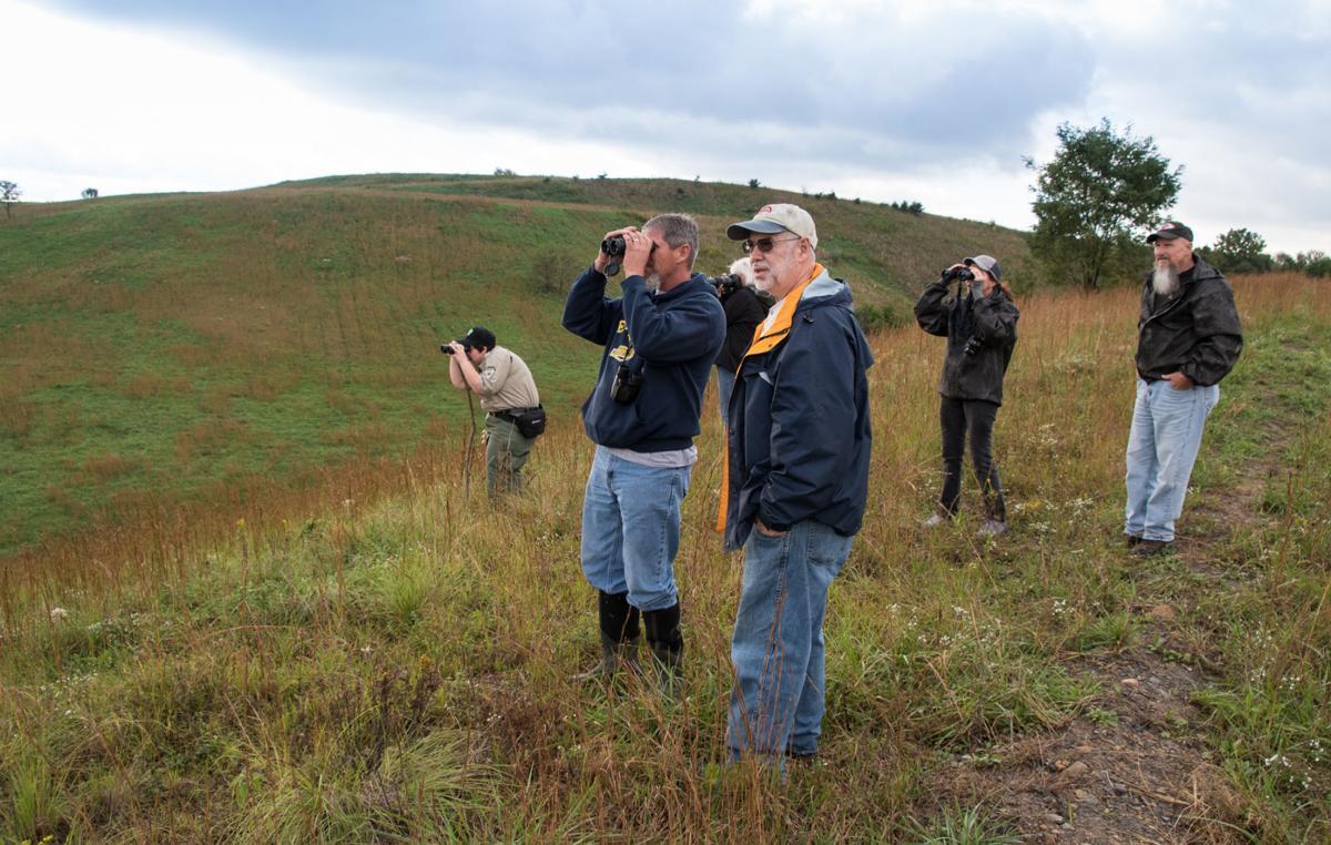 A tourist\'s-eye view of a West Virginia \'elk-management\' tour ...
