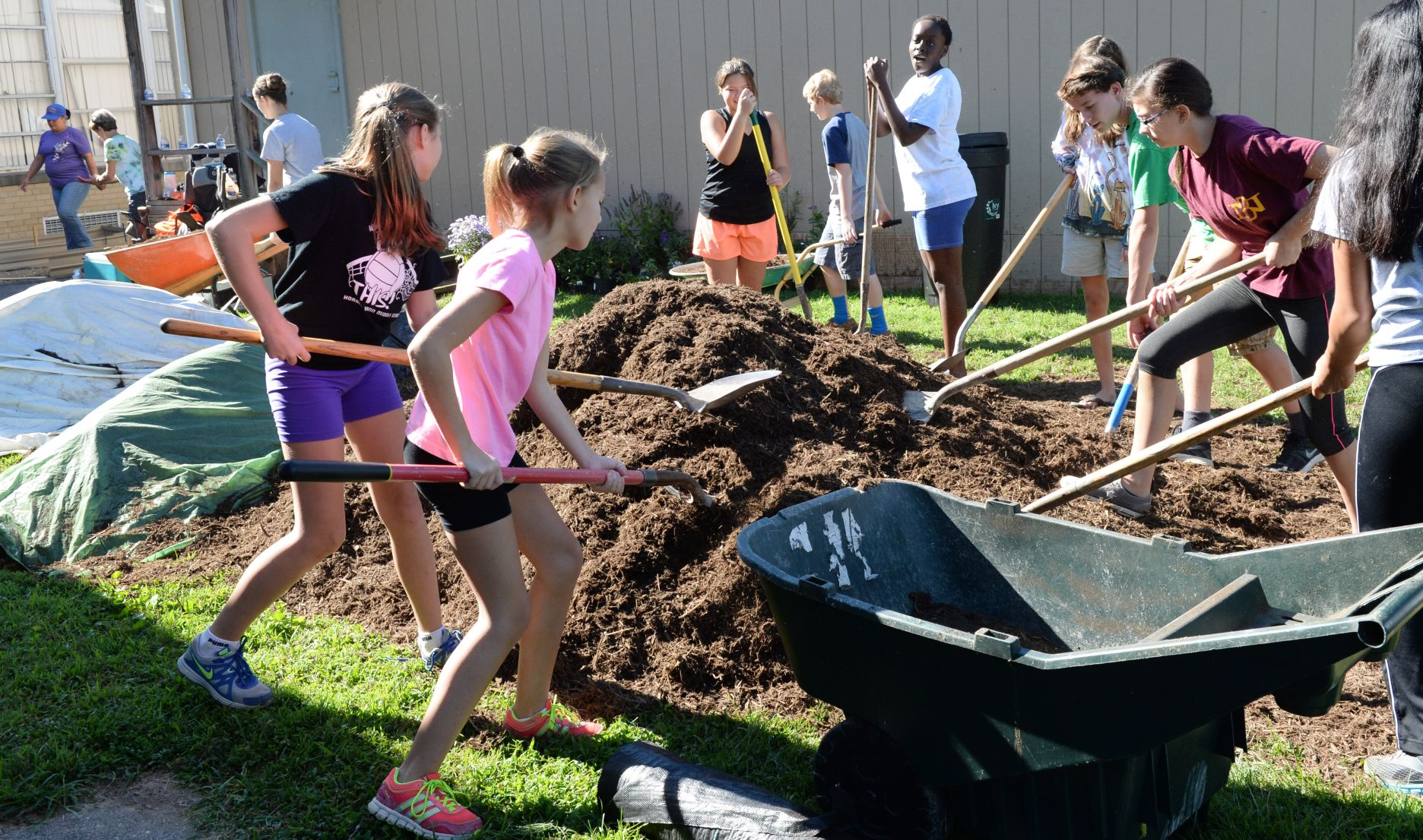 Charleston middle schoolers build habitat for birds bees