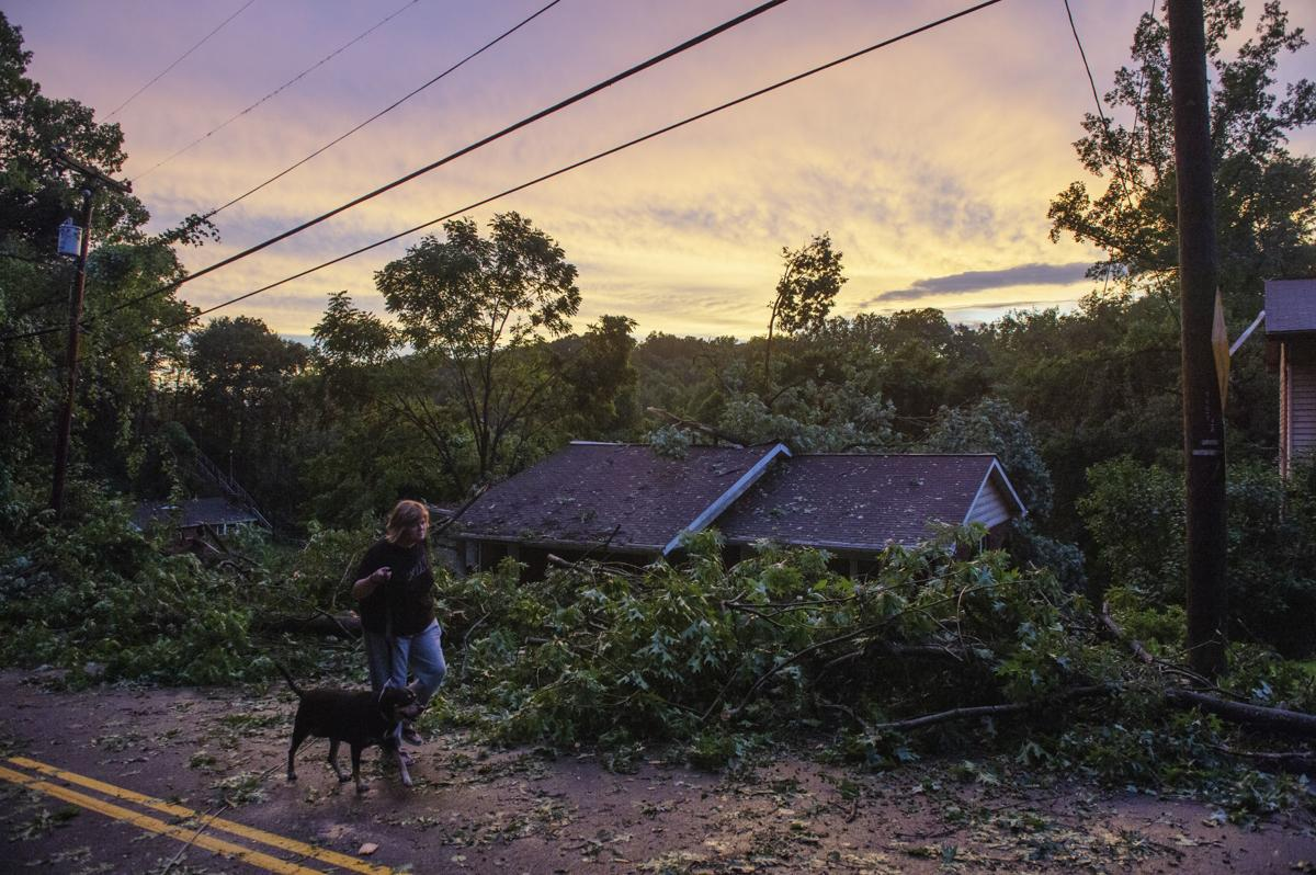 Downed trees, poles after possible tornado reported in
