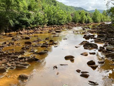 Deckers Creek cleanup to come