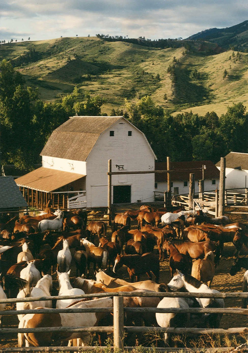 WV Travel Team: Dude ranch vacation feeds cowboy dreams for city ...