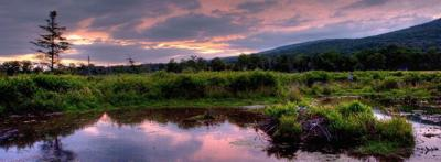 Canaan Valley Wildlife Refuge