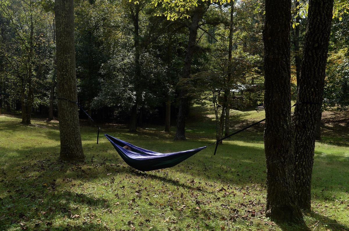 Kanawha parks give visitors a taste of the call of the wild