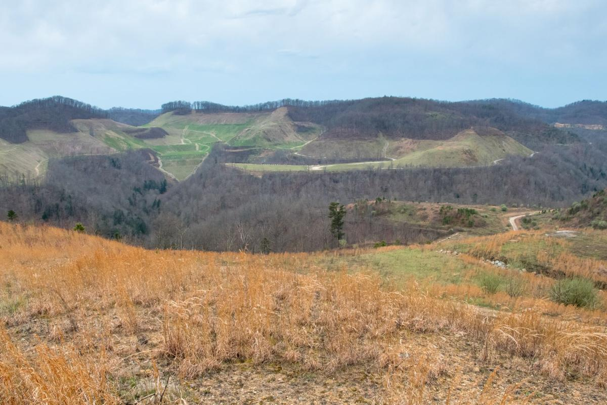 DNR's elk initiative opens vast tracts of public land in