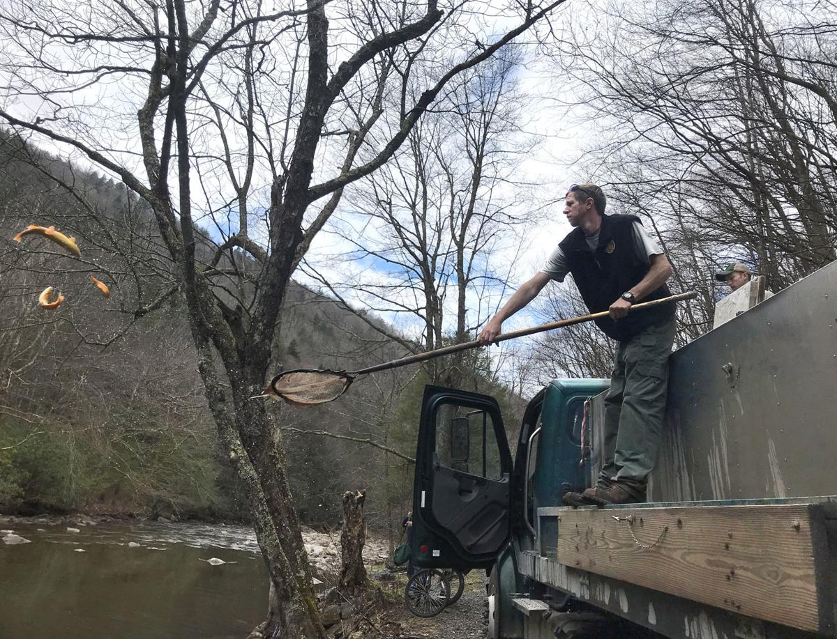 trout stocking cranberry