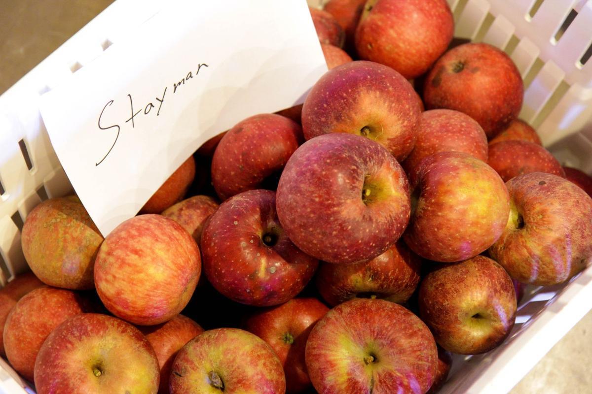 WV Culinary Team: Hard cider industry making Appalachian comeback