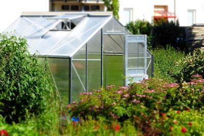 20181104-gm-good-to-grow-greenhouse.jpg