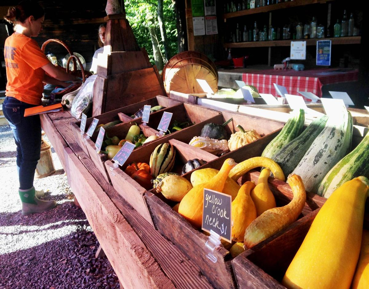 Wardensville Garden Market a welcoming first stop in Eastern WV