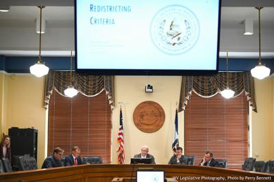 Senate Redistricting Committee