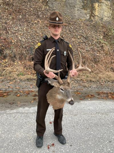 Illegal deer kill
