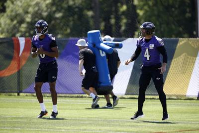 14c8e14791 Former Marshall kicker Kaare Vedvik has turned heads in Ravens  preseason  camp