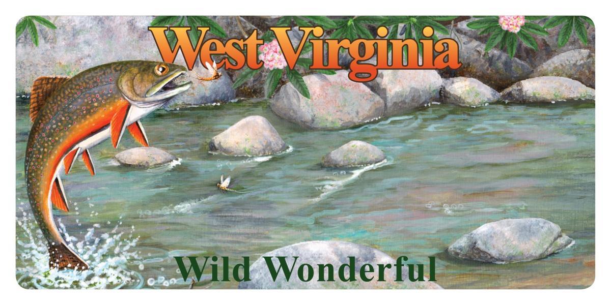 W Va 's new wildlife license plates feature brook trout, bluebird