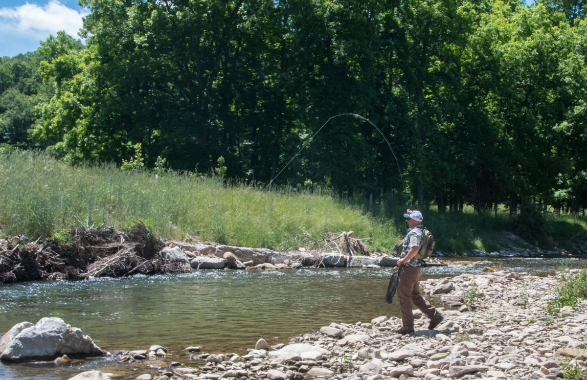 Public-private venture restores trout habitat in upper Potomac R. watershed