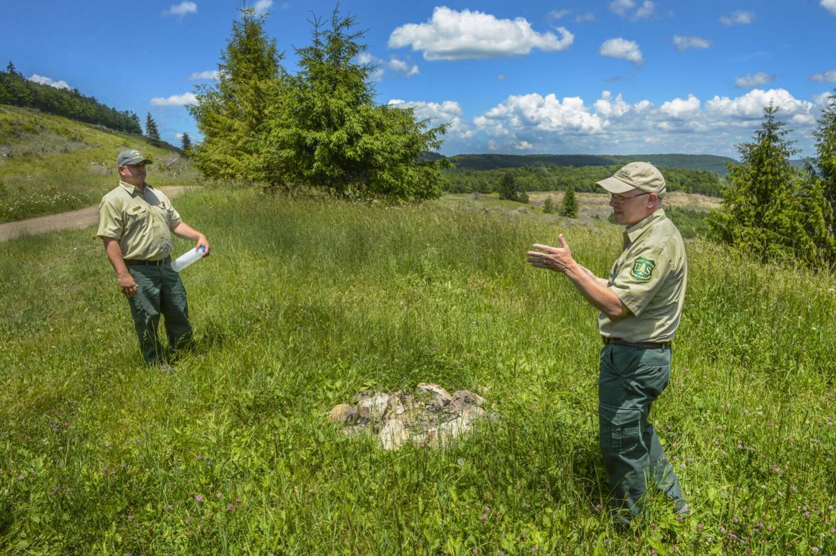 Mower Basin Trail Cheat Mountain