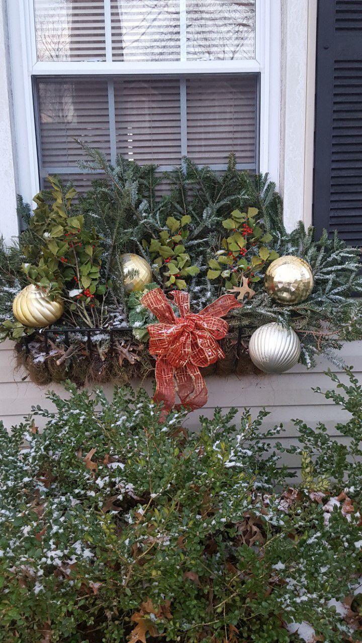 20201129-gm-garden_Christmas windows 2.jpg