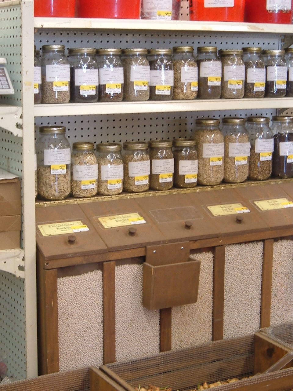 20190901-gm-seeds-4-5-06 Summersville Seed Display 004-3.jpg