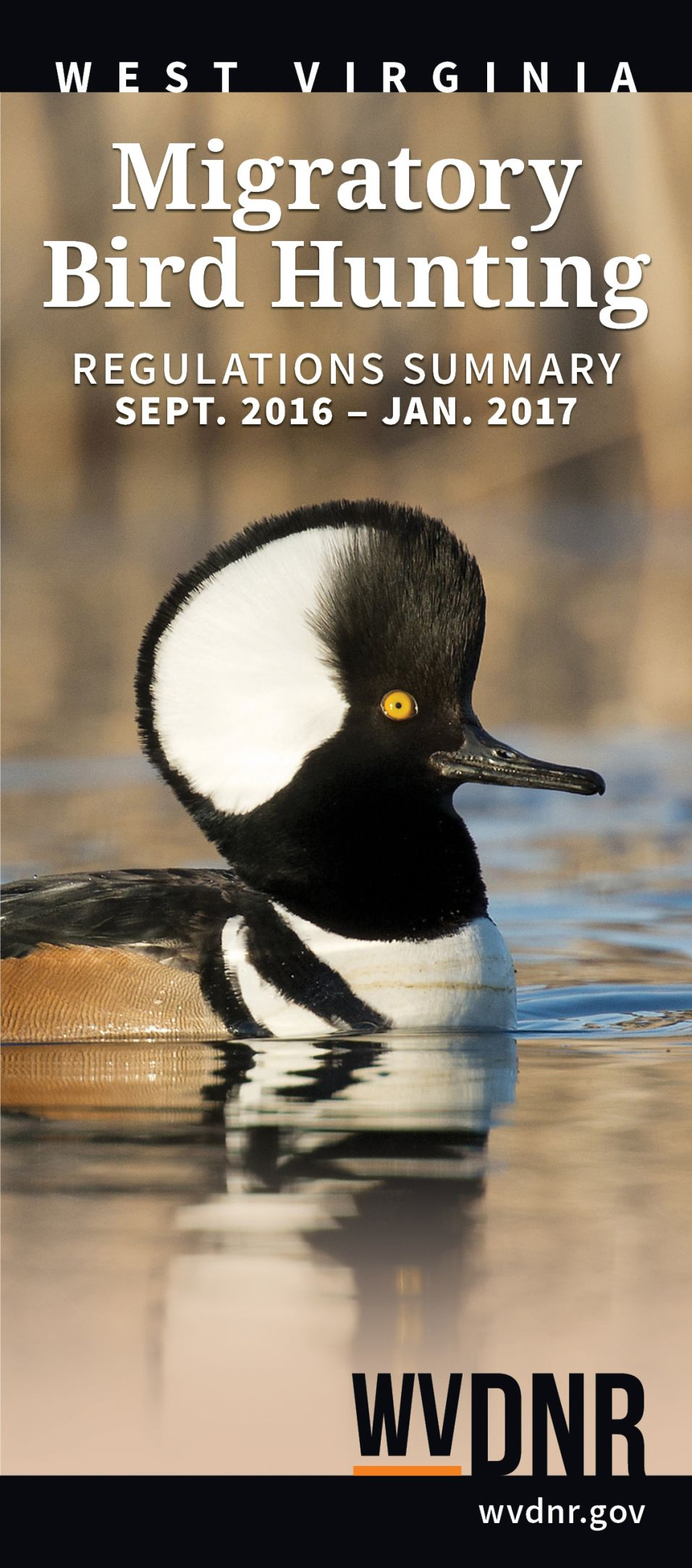 Wv s duck and migratory bird hunting regulations are out for West virginia out of state fishing license