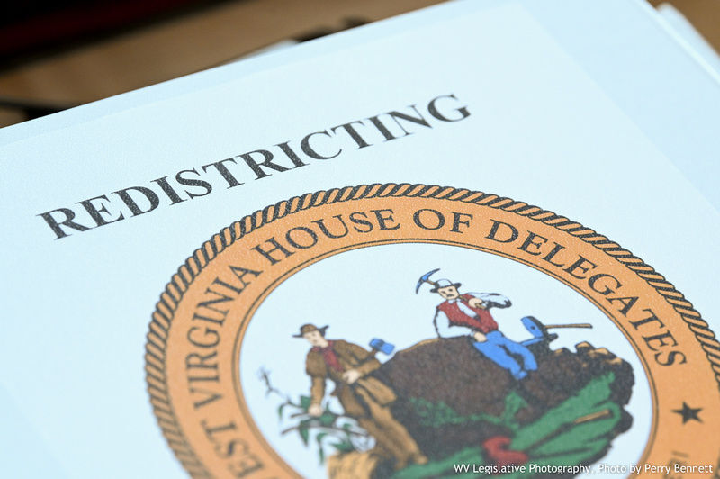 House of Delegates Redistricting