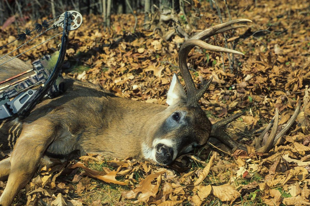 John McCoy: The best and worst counties for deer hunting in