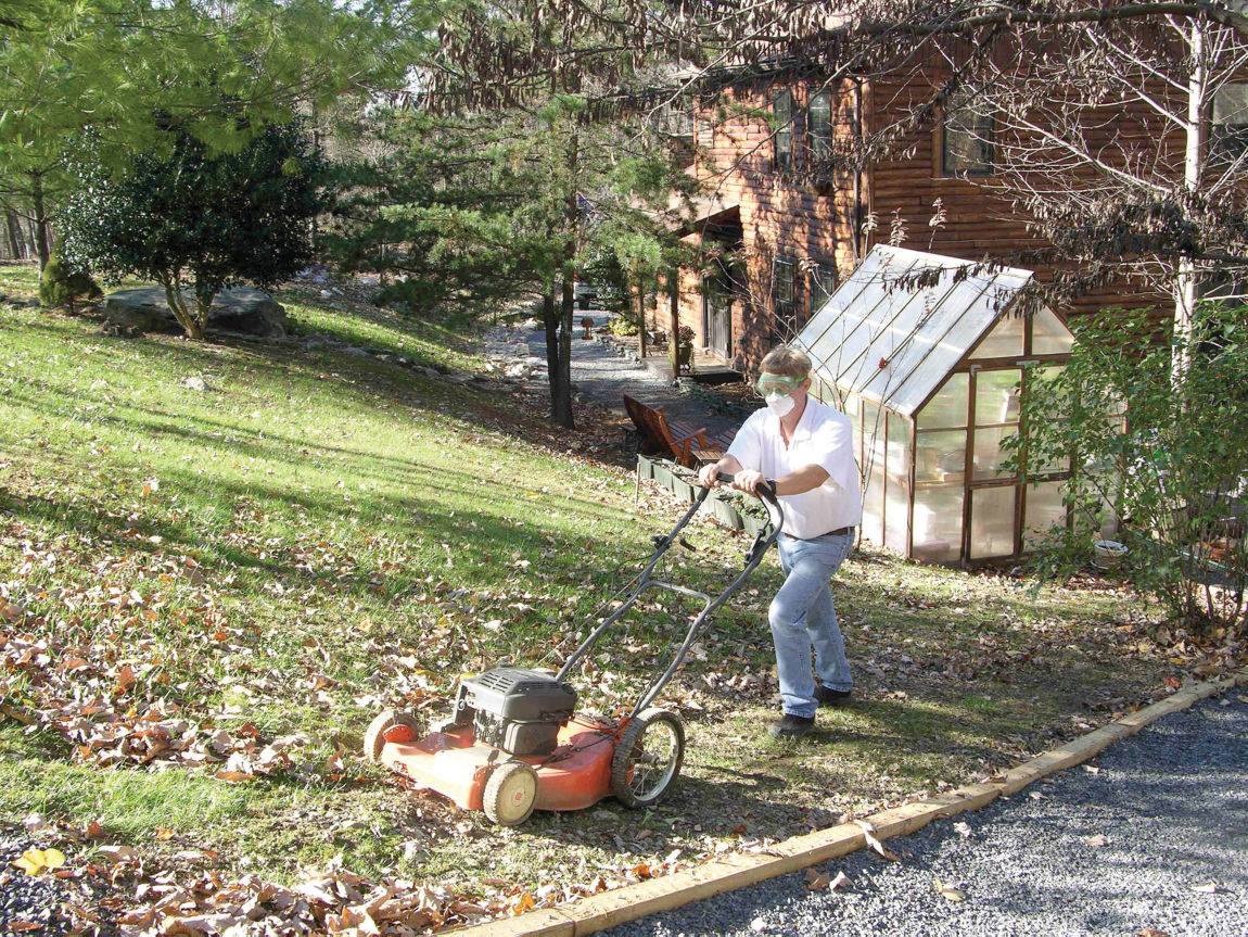 In the garden this fall try mulch mowing leaves into for Vip lawn mowing services
