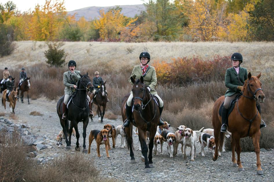 Thrill of the hunt: Horseback riders descend on Yakima Valley for no-kill fox hunt