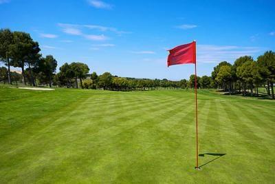 static-vsw-golf.jpg