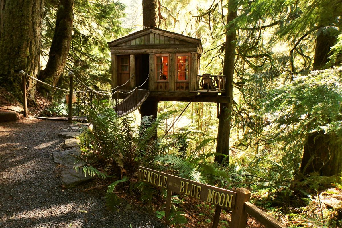 Treehouse Point Your Own Private Perch Travel