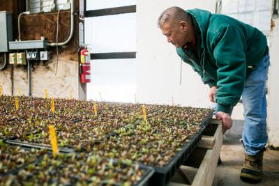 Sustainable farming focus of Tilth Conference in Yakima this weekend